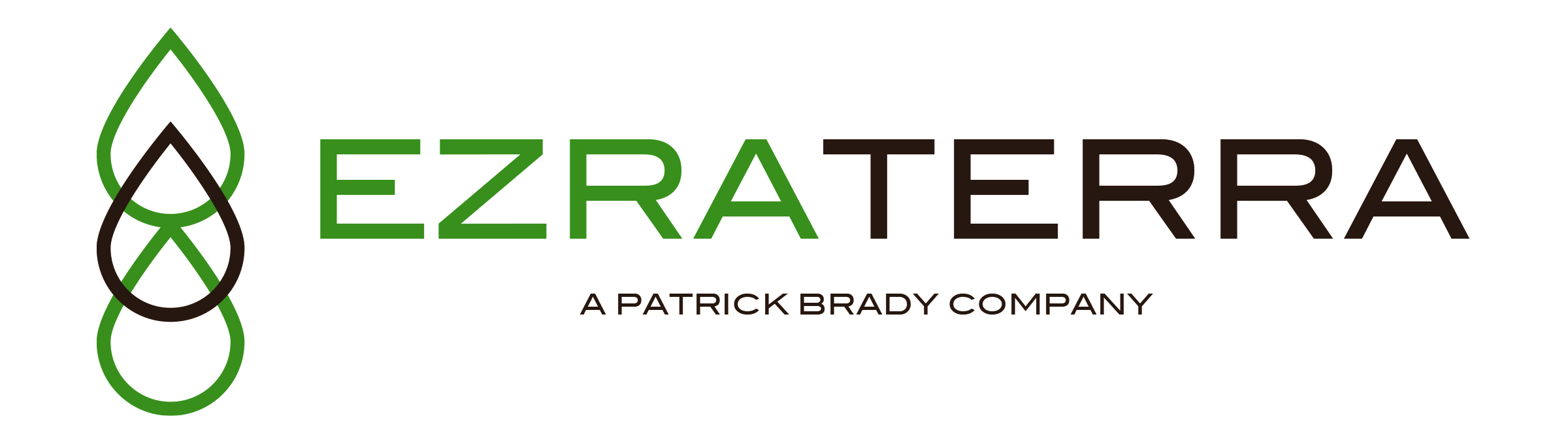 EzraTerra Logo slogan